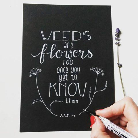 weeds-handlettering
