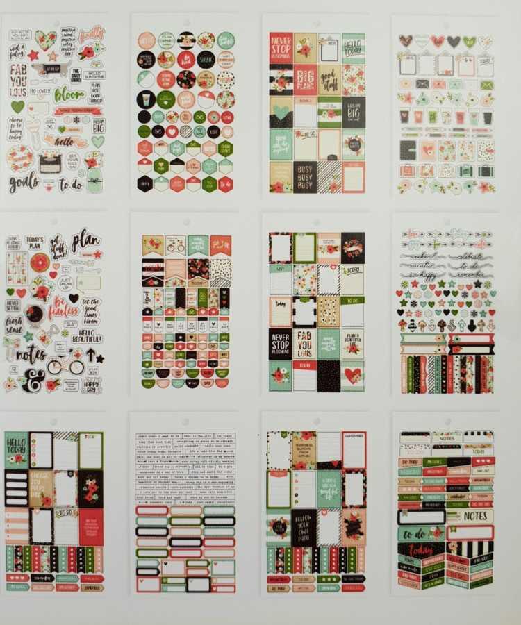 Stickerboek bulletjournaling carpe diem