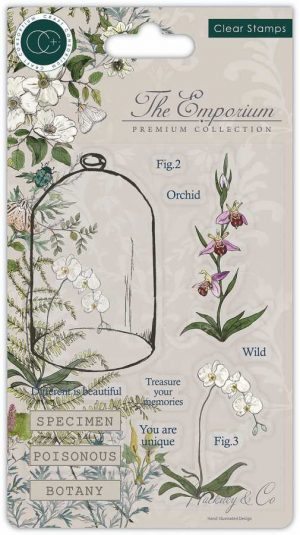 Craft consortium clearstamps orchidee
