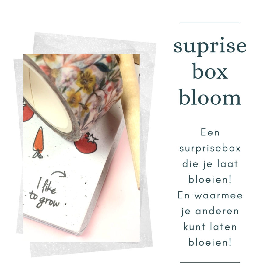 surprisebox bloom